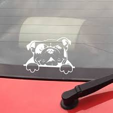 English Bulldog Decal Sticker For Car Window Wall Decoration Pet Dog Bulldog Vinyl Sticker Laptop Notebook Car Decals Decor Wall Stickers Aliexpress