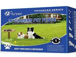 Keep Your Dog Safe With A Havahart Wireless Fence