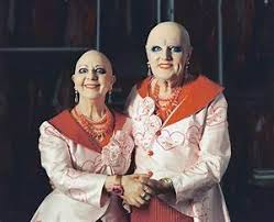 Herunterladen Eva & Adele - Buchportal(2020)