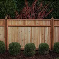 Signature Development 6 Ft H X 8 Ft W Western Red Cedar Solid Top Fence Panel 54333 The Home Depot