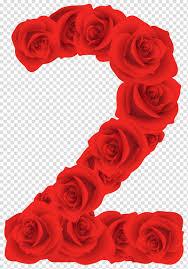 وردة حمراء زهرة التوضيح التشبيك وردة حمراء عدد اثنين Png