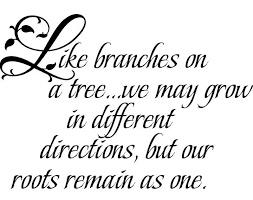 family roots decal family tree quotes sibling quotes roots quotes