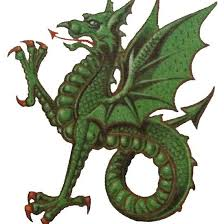 Green Wyvern . #dragon #heraldry #tshirts