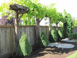Grape Vine Arbor System And Several Other Arbors Pictured On This Link Garden Trellis Designs Garden Trellis Vine Trellis
