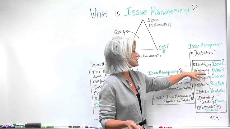 Image result for issues management in project management""