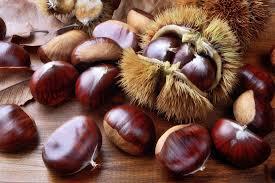 Ореховый Спас 2020 года - какого числа отмечается | Newsment