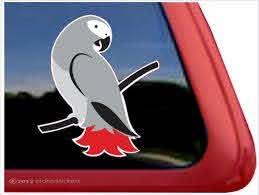 Custom African Grey Parrot Bird Decals Stickers Nickerstickers