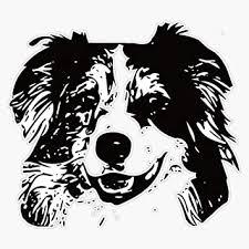 Amazon Com Australian Shepherd Dog Aussie Vinyl Waterproof Sticker Decal Car Laptop Wall Window Bumper Sticker 5 Automotive