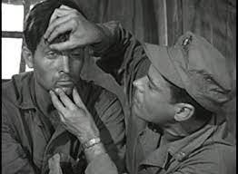 Amazon.com: Combat Psychiatry With Leonard Nimoy And Fess Parker: Fess  Parker, Leonard Nimoy, Traditions Military Videos: Movies & TV