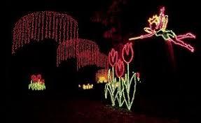 callaway gardens lights up the holidays