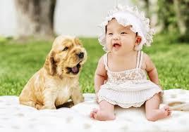 dogs make es laugh dogbuzzclub com