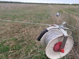Poly Braid Vs Poly Twine For Temporary Portable Fencing Solutions The Pastoralist