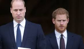 Prince William news: Duke and Harry 'don't own Diana' as expert defends new  musical | Royal | News | Express.co.uk