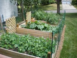 raised bed vegetable garden fence
