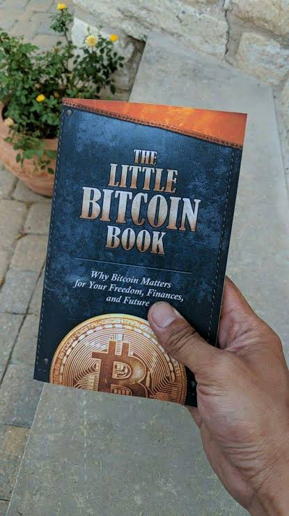 Image result for the little bitcoin book""