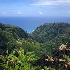 a deled parison of maui vs kauai