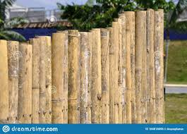419 Bamboo Fencing Photos Free Royalty Free Stock Photos From Dreamstime