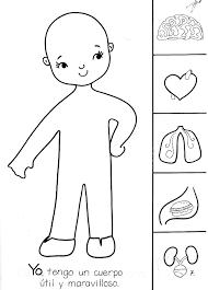 Resultado de imagen para actividades practicas de las partes del cuerpo para niños de primero