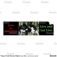 Vegan Punk Animal Rights Car Sticker Zazzle Com Bumper Stickers Car Stickers Custom Personalized Gifts