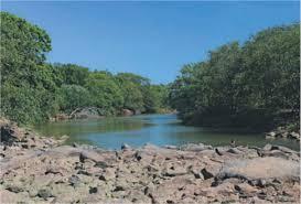 Nível de rios é alarmante - Matérias - Sipces