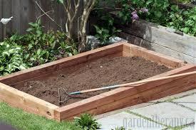 vegetable garden with raised garden beds