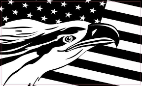 5in X 3in Black And White Eagle American Flag Magnet Magnetic Vehicle Stickertalk