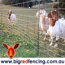 Electric Fence Netting Big Red Fencing