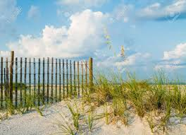 A Sand Dune With Sea Grass Along A Sand Fence On The Beach Stock Photo Picture And Royalty Free Image Image 16226394