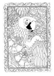 Coloring Page Parrot Kleurplaten Adult Coloring Pages Kleurboek