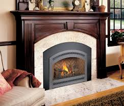 gas fireplace inserts country stove