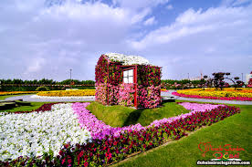 ميراكل جاردن دبي صور موقع عنوان احداثيات أسعار