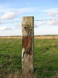 File A Well Weathered Fence Post Geograph Org Uk 666453 Jpg Wikimedia Commons