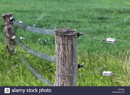 Electric Fence Gate Protects A Green Grass Pasture Stock Photo Alamy