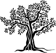 Olive Tree Wall Sticker Tenstickers