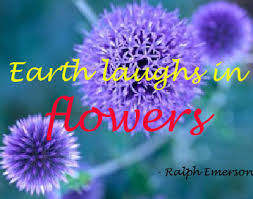 """earth laughs in a flower """" ralph emerson nature quote"""