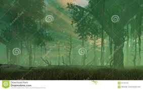 Fairy Firefly Lights In Misty Night Forest Stock Illustration Illustration Of Scenic Firefly 92730143
