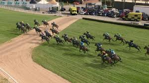 Who will win the Virtual Grand National ...