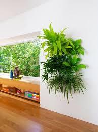wall planters indoor vertical garden