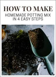 how to make potting mix at home guide