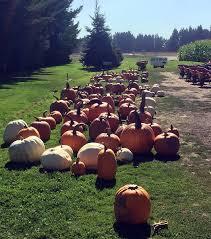 Old Fashion Halloween: Vince Wood Farm