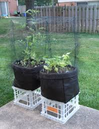 diy gardening ncif international