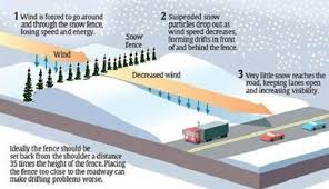 Wisconsin Department Of Transportation Living Snow Fence
