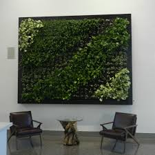 how to create a living wall in your