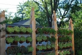 26 Diy Garden Privacy Ideas That Are Affordable Incredible Balcony Garden Web