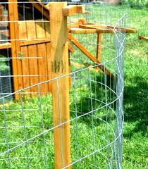 Confirm That You Are Not A Robot Free Range Chickens Building A Chicken Coop Free Range Chickens Coop