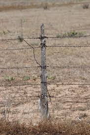 Barbwire And Old Wood Fence Post Photograph By Colleen Cornelius