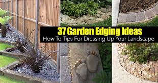 ideas to dress up your landscape edging