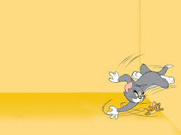 Top 25 hình nền mèo Tom và chuột Jerry đẹp nhất | Cartoon wallpaper hd, Tom  and jerry wallpapers, Cartoon wallpaper