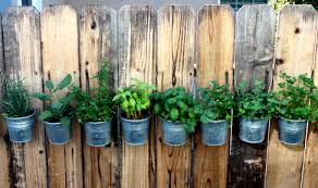 Diy Hanging Fence Herb Garden Silly Whims