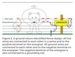 Deterring Bears With Electrified Fences A Beginners Guide